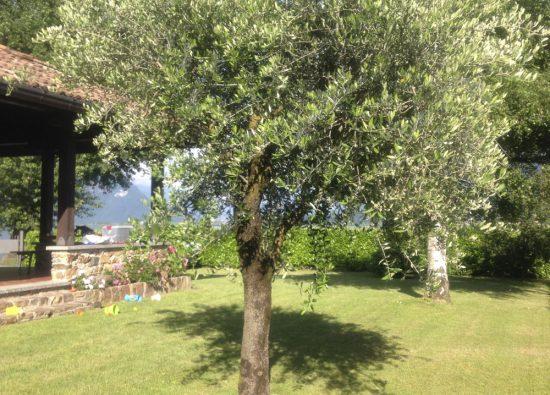 villa-rita-with-garden-lake-como