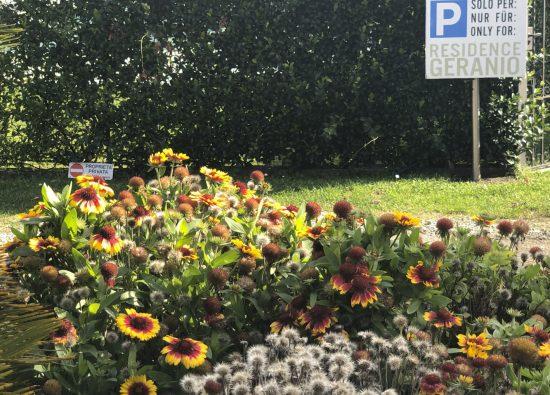 residence-domaso-parcheggio-privato-01